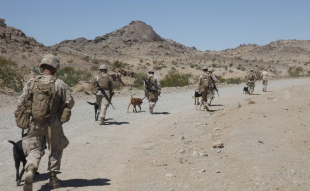 "alt=""perros militares"""