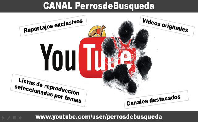 Canal PerrosdeBusqueda Youtube