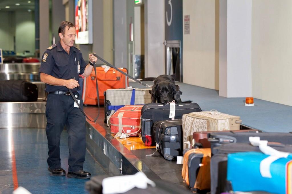 detectores policiales