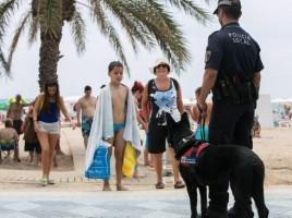 """alt=""""perros refuerzan vigilancia playas"""""""