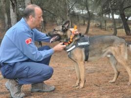 "alt=""perros de rescate usan Garmin"""