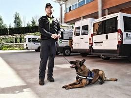 "alt=""perro antidroga Policía Plasencia"""