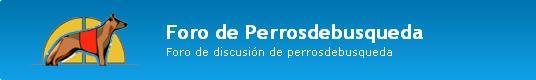 """alt=""""foros PerrosdeBusqueda"""""""