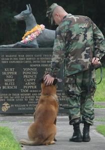 Un homenaje a los perros militares