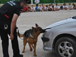 """alt=""""perros policía detectan drogas escuela Alberic"""""""