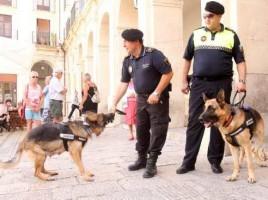 """alt=""""Unidad canina Alcoy busca drogas centros educativos"""""""