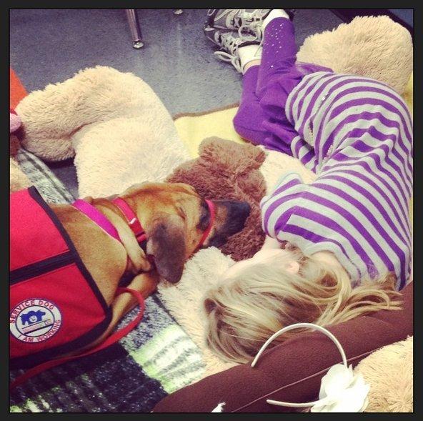 Tumbados perro y niña