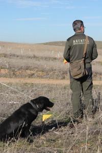 Agentes-medio-ambiente+perro-Toledo