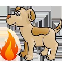 "alt=""perro de acelerantes"""