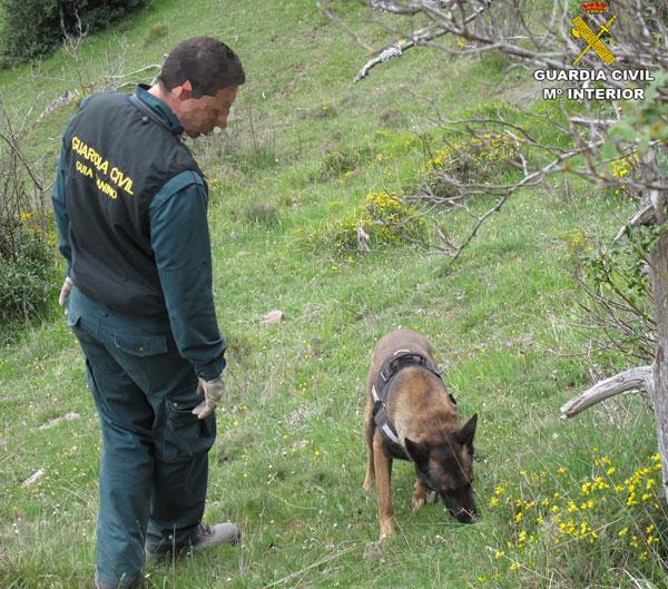 """alt=""""unidad canina cebos Guardia Civil"""""""