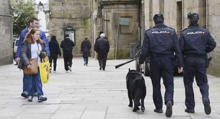 """alt=""""Perros explosivos Policia Nacional Santiago"""""""