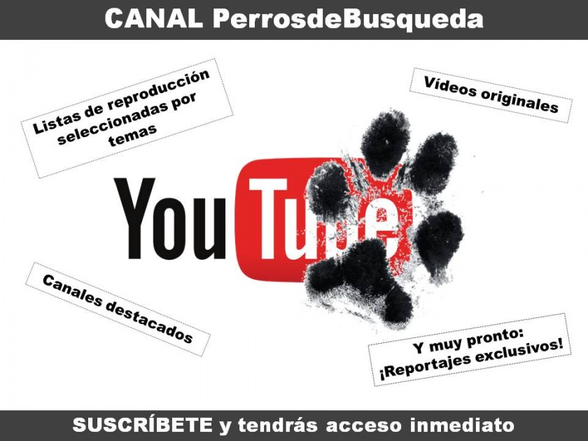 exclusivo canal