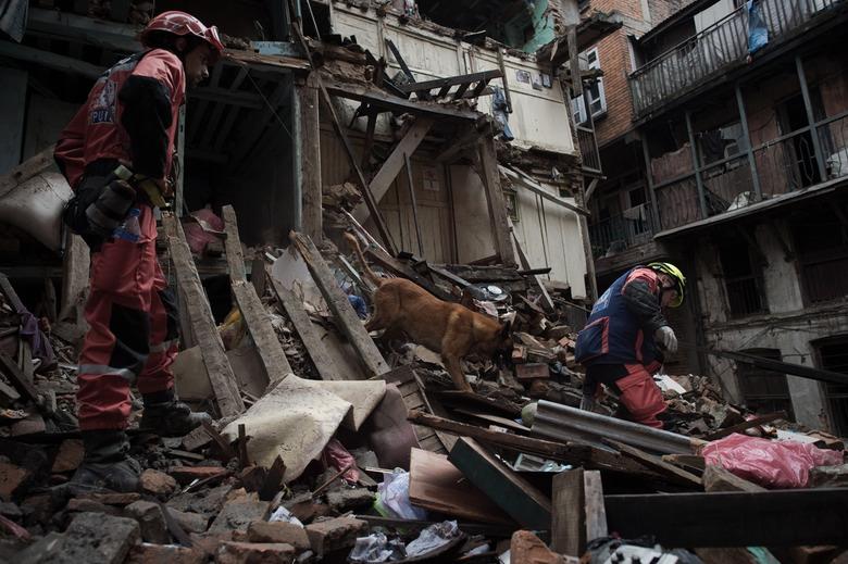 "alt=""perros rescate Nepal"""
