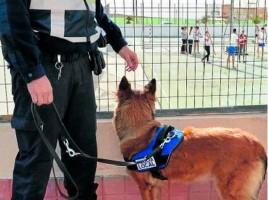 """alt=""""Sara perro policía IES Gran Canaria"""""""