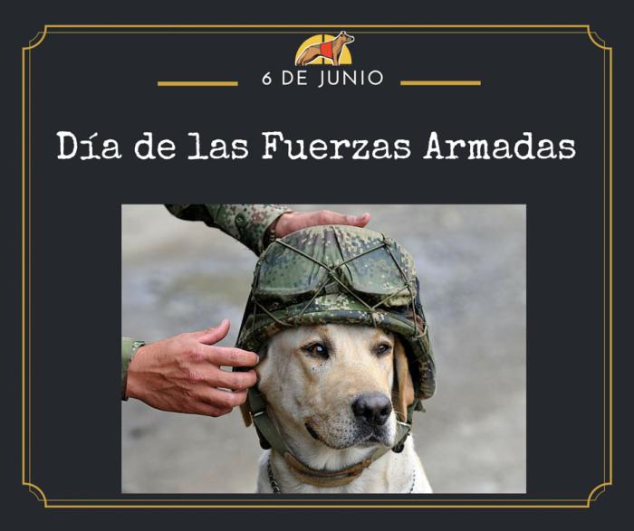 """alt=""""Día Fuerzas Armadas perros"""""""