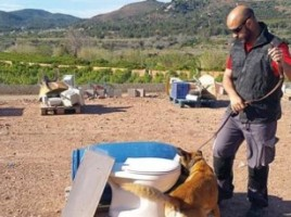 "alt=""Tango perro explosivos Canarias"""