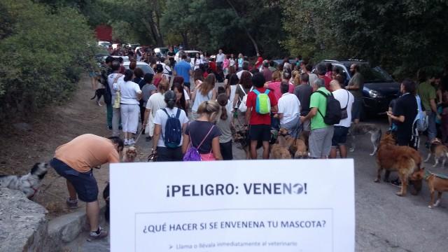 "alt=""marcha veneno Navacerrada muerte perros"""