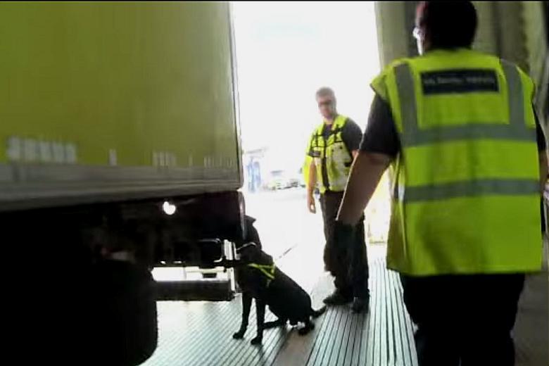 """alt=""""perro detector inmigrantes Calais"""""""