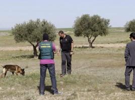 """alt=""""perro detector restos biológicos Guardia Civil"""""""