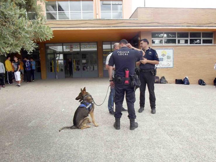 "alt=""perro detector droga en instituto Onil"""