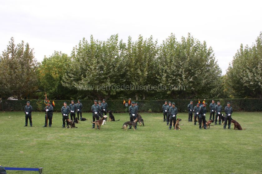 equipo cinológico celebración día de la Patrona Guardia Civil