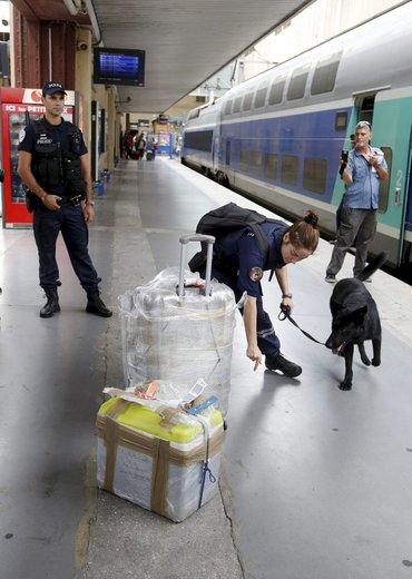 """alt=""""perro detector explosivos estacion Marsella"""""""