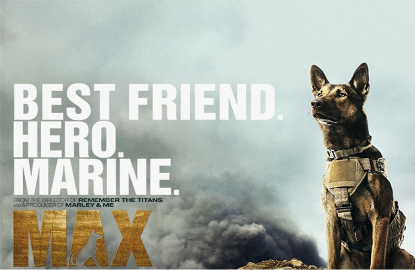 perro marine