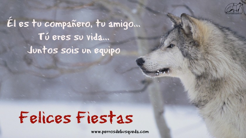 "alt=""Felices Fiestas Navidad 2015"""