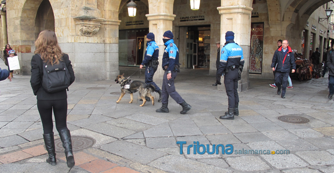 "alt=""perros policia en Salamanca"""