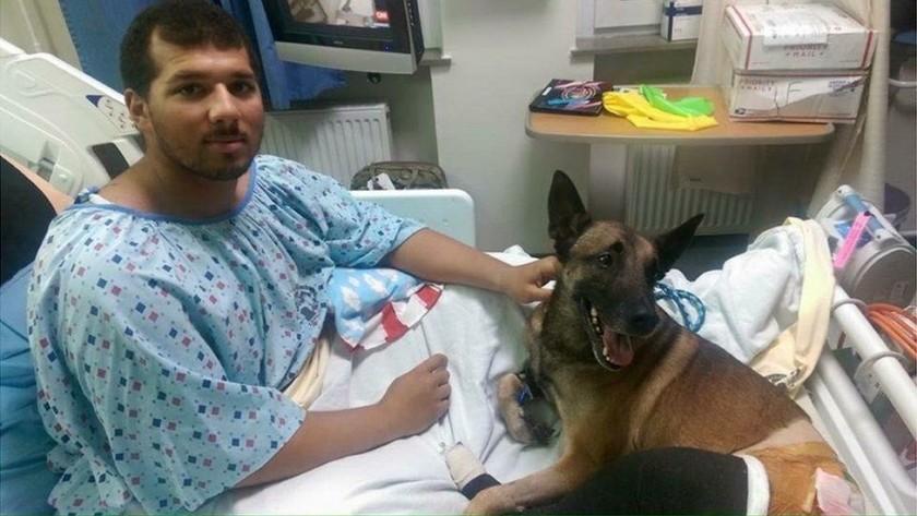 """alt=""""soldado y perro militar juntos en hospital"""""""