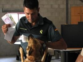 Perros del dinero en frontera con Andorra