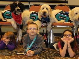 Denuncian Angel Service Dogs venta perros detectores mal entrenados