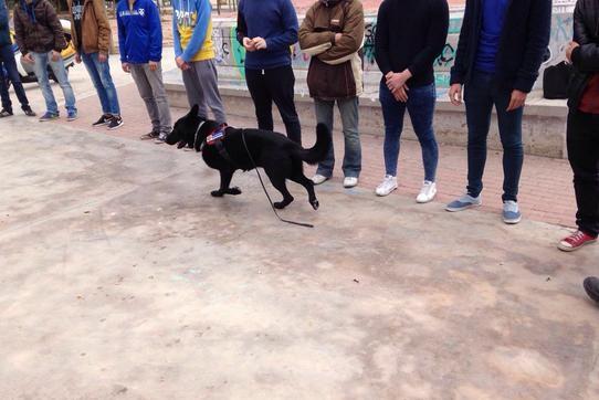 Campaña de control prevención drogas instituto unidad canina