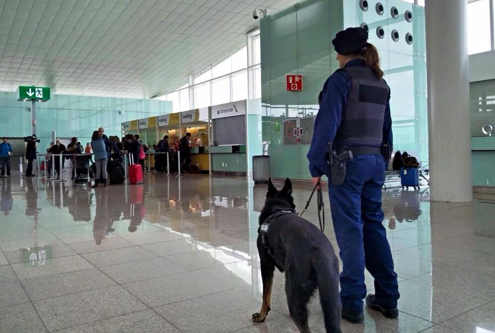 Unidad canina aeropuerto del Prat