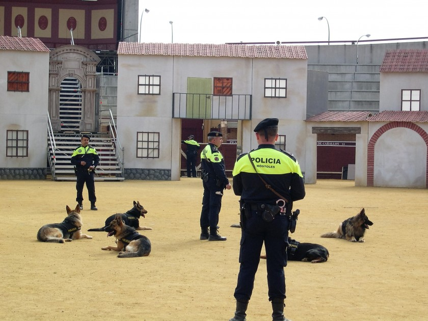 V Jornadas policiales