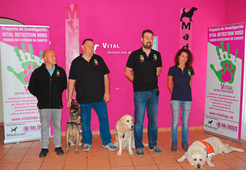 vitaldetectiondog-equipo