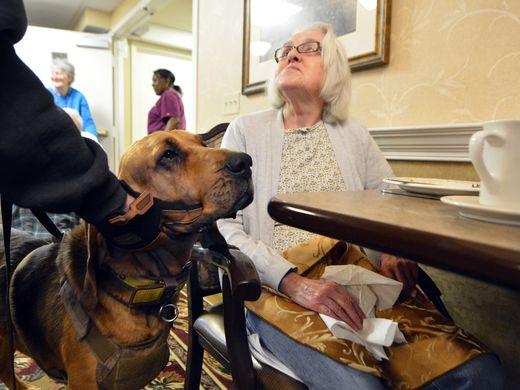 ancianos de la residencia
