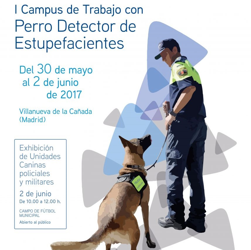 I Campus