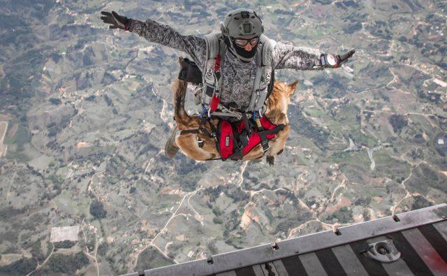 paracaidista de la Fuerza Aérea