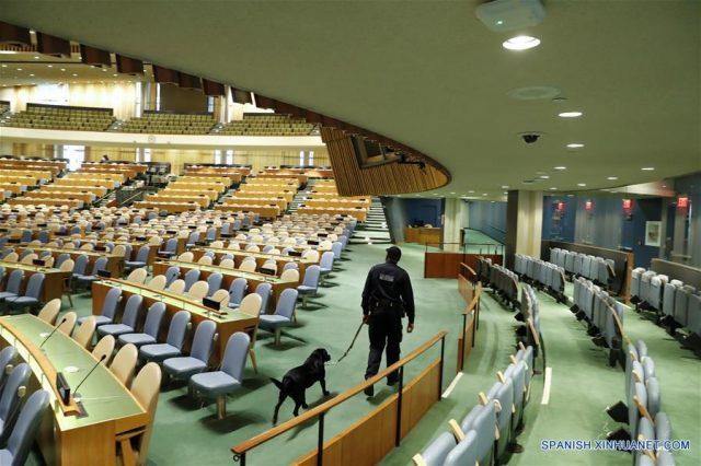 detectores de la ONU