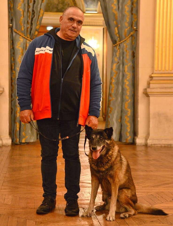 perros héroes