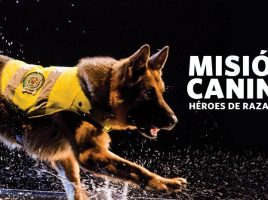 'Misión Canina'