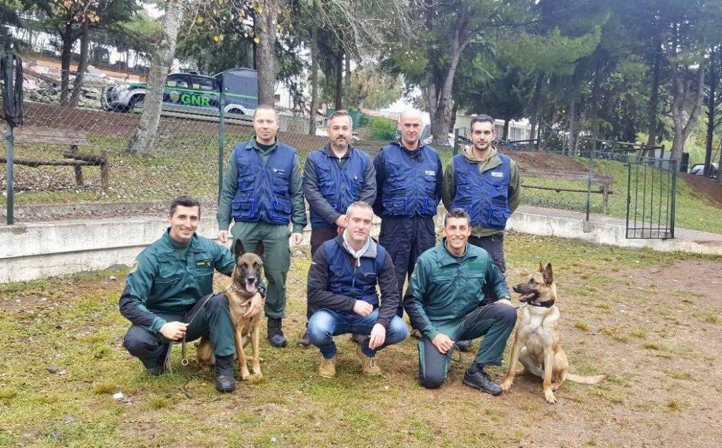 unidades caninas internacionales