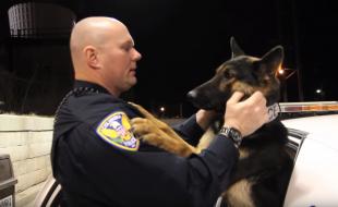 vínculo entre perros policía