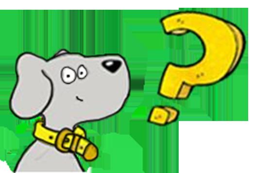 perros detectores