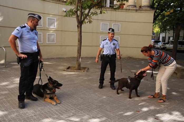 relevo Unidad Canina Policía Girona