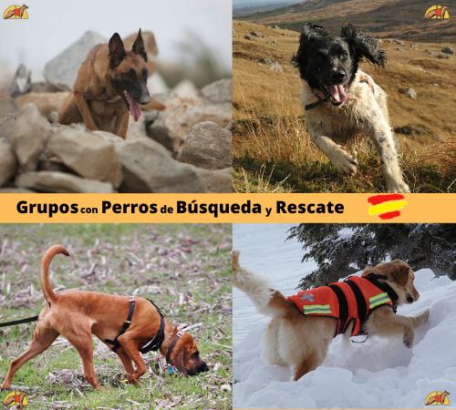 Grupos perros rescate  España