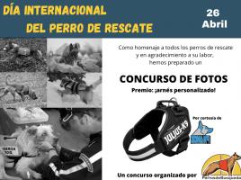 Día Internacional del perro de rescate