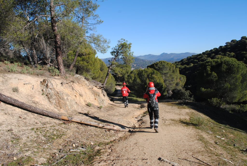 Mantrailing paseandoperros