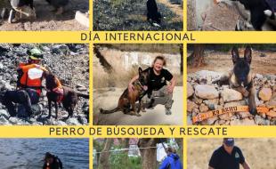 Día Internacional del Perro de Rescate 2021